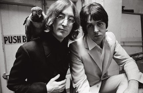 beatles-john-lennon-parrot-paul-mccartney-the-beatles-Favim.com-122269
