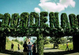 festival-coordenada-2016-freim
